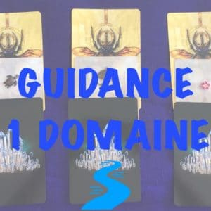 Guidance 1 domaine / 1 question
